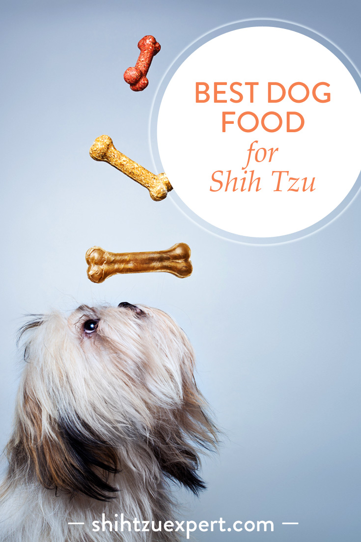 Best dog food for Shih Tzu– Buyer's Guide