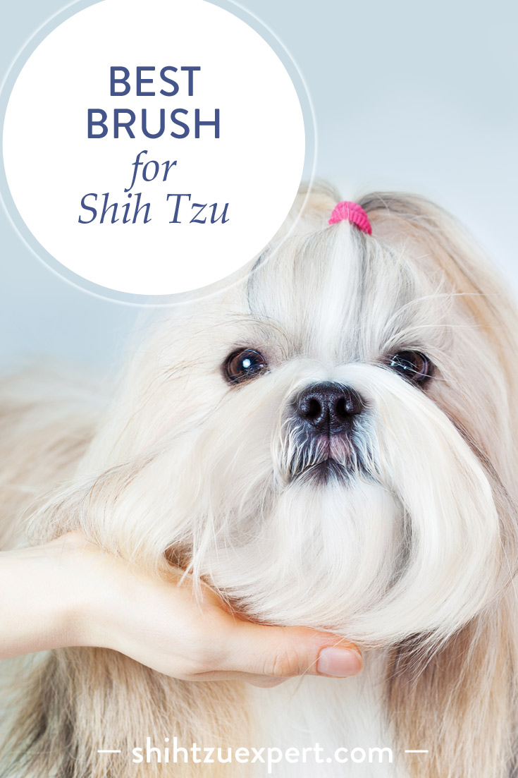 Best Brush For Shih Tzu Reviews And A Buyers Guide