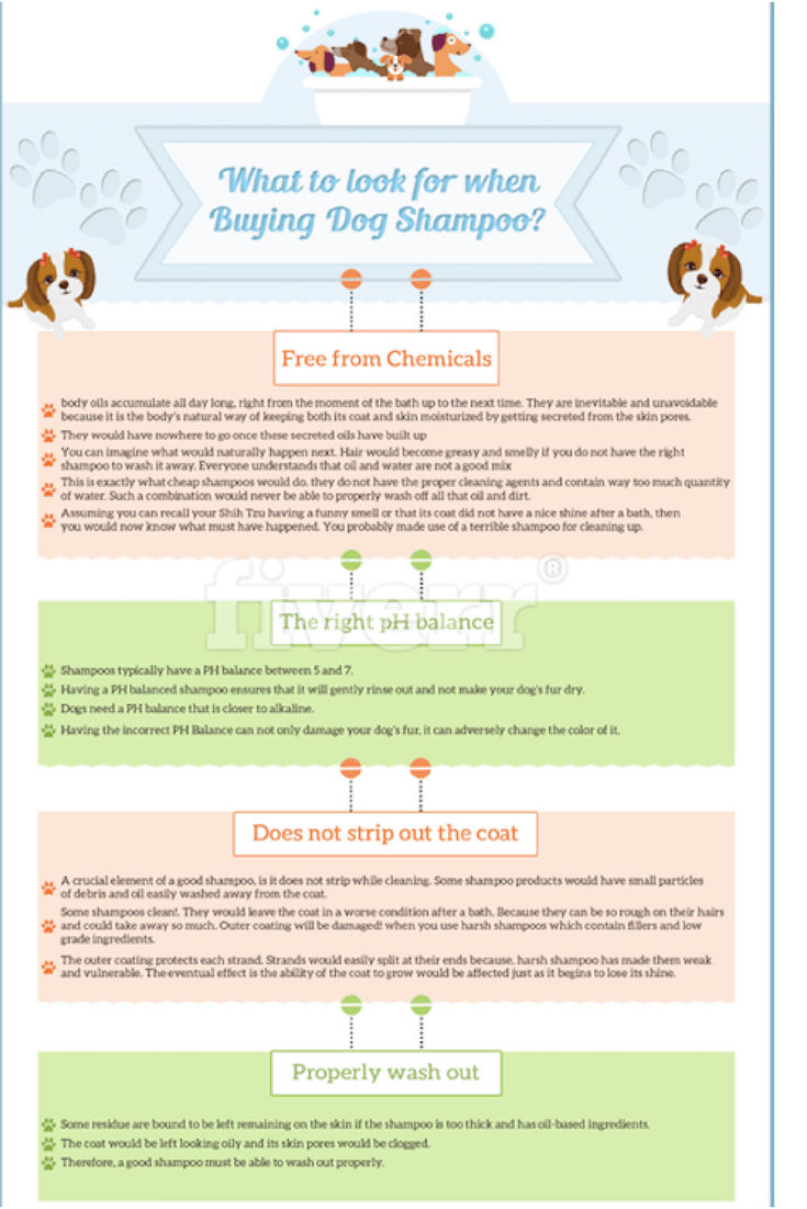 What to Look for When Buying Dog Shampoo