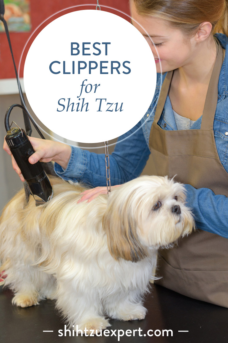 Top 6 Best Dog Clippers For Shih Tzu In October 2018 Buyers