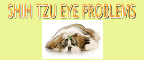Appropriate treatment for eye disorders