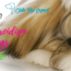 Hypothyroidism in dogs – Is it life threatening_ Can it be cured_