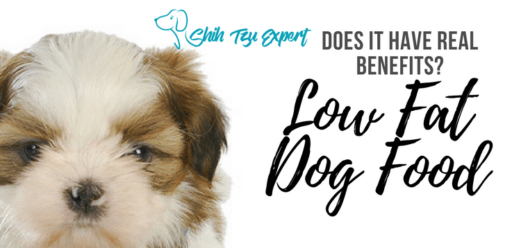 Low Fat Dog Food Is this another Fad Diet?  or does it have Real Benefits?