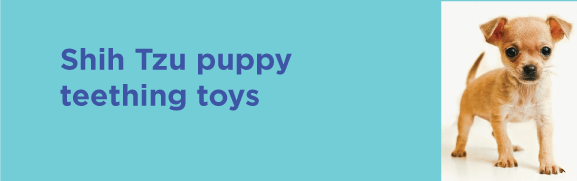 Shih Tzu puppy teething toys