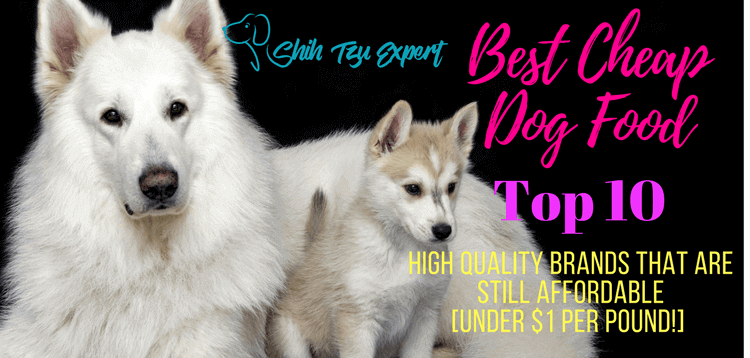 The Best Inexpensive Dog Food